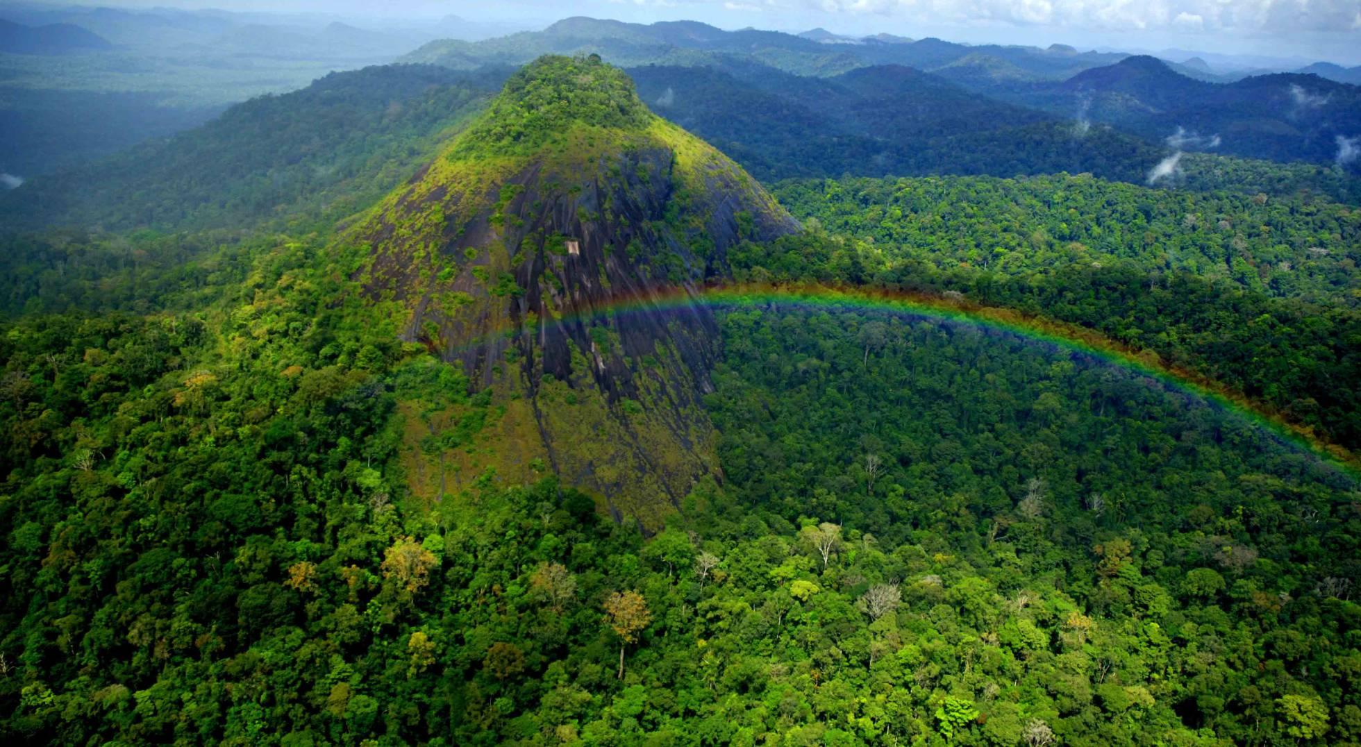 Vista do parque Nacional Montanhas do Tumucumaque, no Amapá. (Foto Acervo ICMBio)